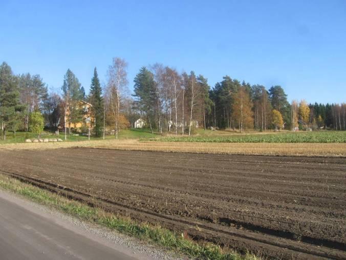 ¿Qué es lo que une un agricultor de Renko, el hombre de negocios más rico en Finlandia y la Reina de Reinos Unidos? El azúcar y los subsidios de la Unión Europea. Pero no hay sobreproducción nacional en Finlandia.