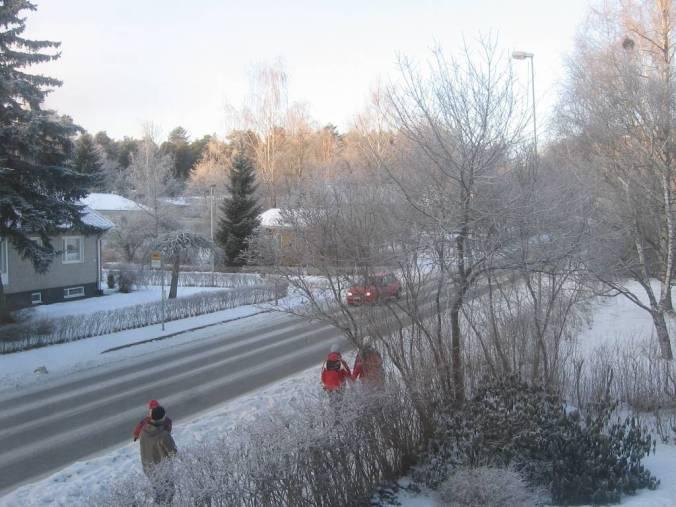 Una foto más de la ventana de mi estudio en una mañana fria